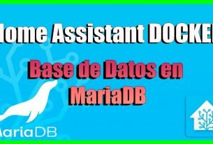 Home Assistant Docker Mariadb